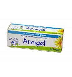 BOIRON Arnigel 45 gr